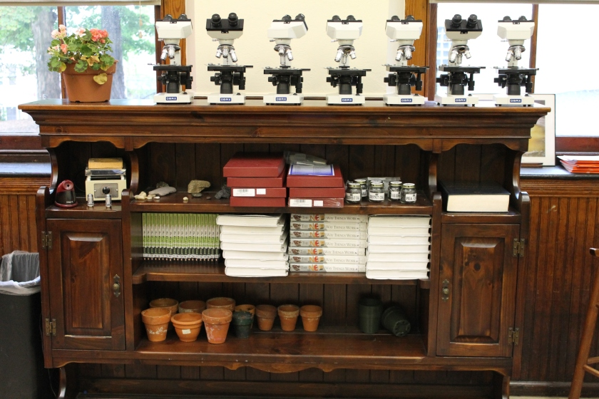 A china cupboard top used for a bookcase, microscope storage, nature items and other items used in the classroom.